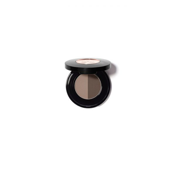 anastasia duo brow powder